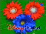 DisneyFlowers1997