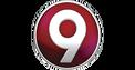 Logo canal9