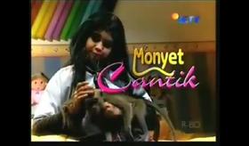 Monyet Cantik.png