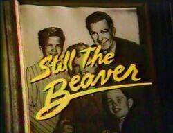 Still-the-beaver.jpg