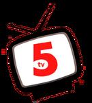 TV5 Shake TV (2008-2010)