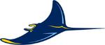 Tampa Bay Rays logo (alternate)
