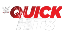 Wwe quick hits logo by wrestling networld-d8c926w.png