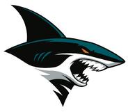 Sharks 2016 secondary 3