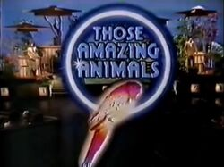 Those Amazing Animals Intertitle.jpg