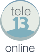 T13Movil2010 1.png