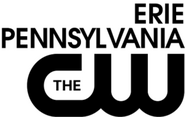 WSEE-CW logo 2014