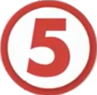 The 5 Network's 5Plus Logo
