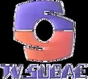 Tvsubae1988.png