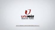 Wfut wfty unimas nueva york id 2016