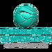 Phoenix Super LPG Fuel Masters logo