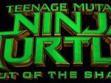Teenage Mutant Ninja Turtles: Out of the Shadows (film)
