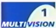 Multivision1