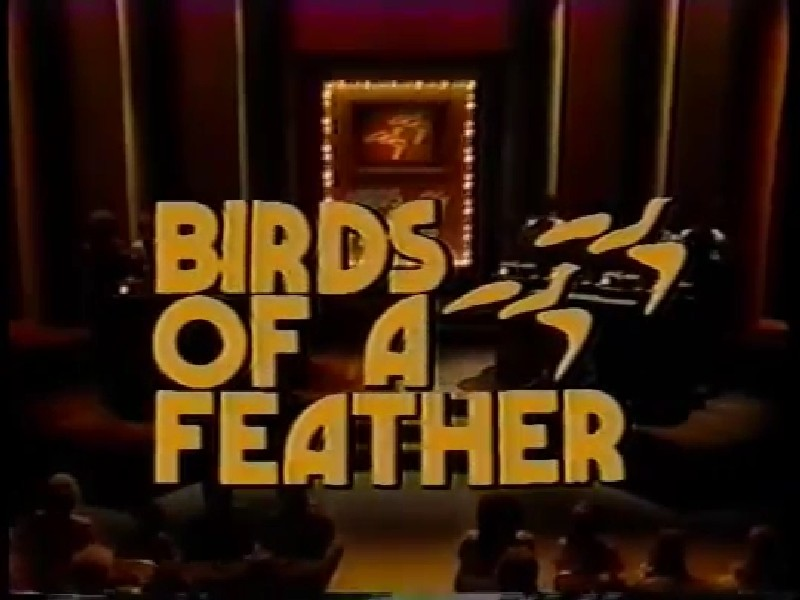 Birds of a Feather (game show)