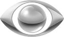 Band logo 2010 (gray)