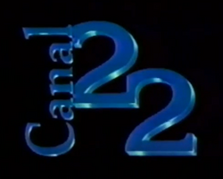 Canal 22 (1993-1998)