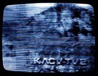 Medium 02-kacv.jpg