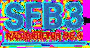 SFB3 logo 1996.png