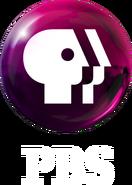 PBS 2009 logo vertical (Magenta, White text)