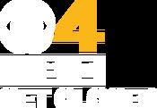 WBZ Logo Gold White get closer
