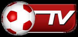 Bóng Đá TV (2009-2017).png