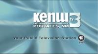 Kenw tv 2008 2