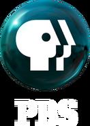 PBS 2009 logo vertical (White)