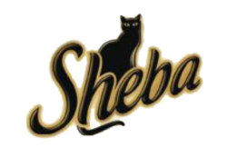 Shebaold3.png