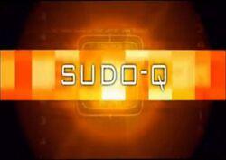 Sudo-q.jpg