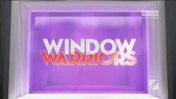 Window Warriors.jpg