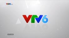 VTV6 (01.01.2015-01.01.2016)