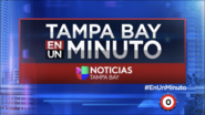 Wvea tampa bay en un minuto package 2017