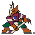 Phoenix Coyotes 1996