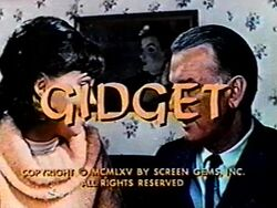 Gidget 1965a.jpg