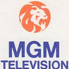 MGMTelevision1981.png