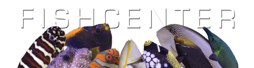 FishCenter ShowHeader