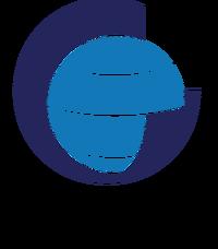 Badan Informasi Geospasial.png