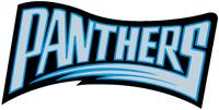 Carolina Panthers wordmark (1995 season)