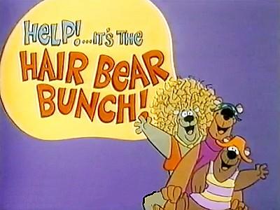 Help!...It's the Hair Bear Bunch!