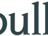 Bull (TV series)
