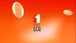 ABC2012IDMissFisher2