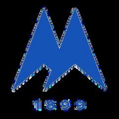 Torquay United Logo current.png