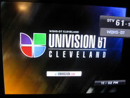 Wqhs univision 61 id 2010