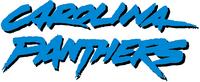 Carolina Panthers wordmark (1996-2011)