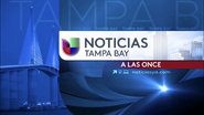Wvea noticias univision tampa bay 11pm package 2017