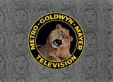 MGM Television 1966