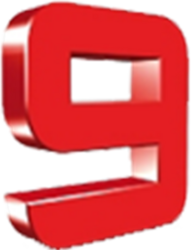 Canal Nueve Litoral (Logo 2007).png