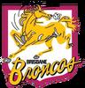BrisbaneBroncos (1988) (RETRO)