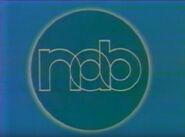 NAB 1987 (B)