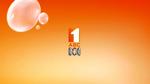 ABC2012IDShaunMicallef